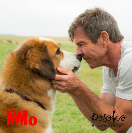 Šuns tikslas 2 | Filmas | MO muziejus